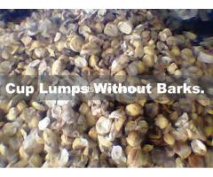 Cup Lumps - 100% Natural Rubber.